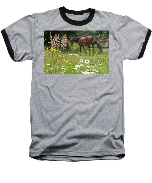 Peaceful Pasture Baseball T-Shirt by Michelle Twohig