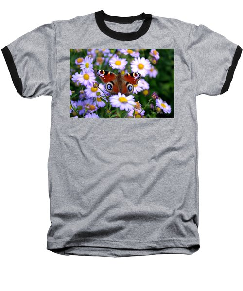 Peacock Butterfly Perched On The Daisies Baseball T-Shirt