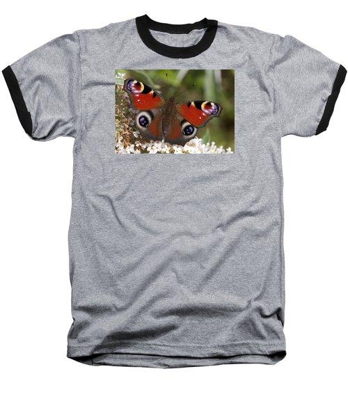 Peacock Butterfly Baseball T-Shirt by Richard Thomas