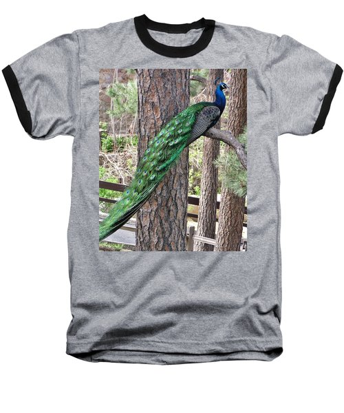 Baseball T-Shirt featuring the photograph Peacock Watches The World by Diane Alexander