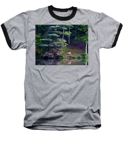 Peaks Of Otter Deer Baseball T-Shirt by John Haldane