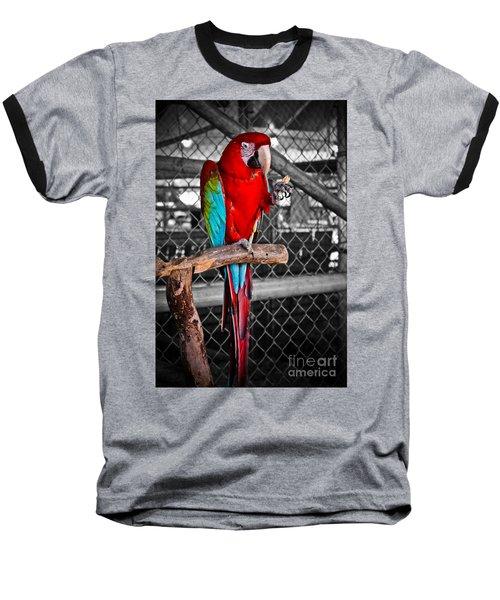 Peanut  Anyone Baseball T-Shirt