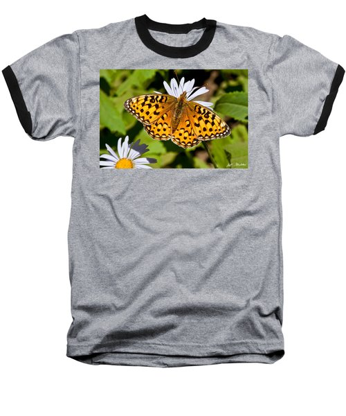 Baseball T-Shirt featuring the photograph Pearl Border Fritillary Butterfly On An Aster Bloom by Jeff Goulden