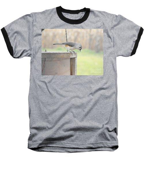 Peeking Chickadee Baseball T-Shirt