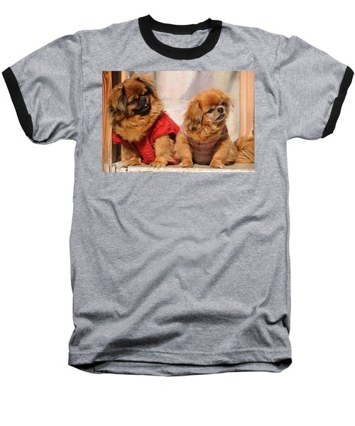 Pekingese Pair Baseball T-Shirt