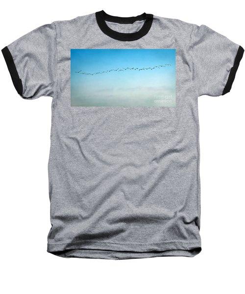 Pelican Flight Line Baseball T-Shirt