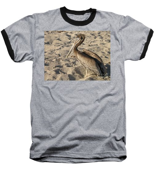 Pelican On Beach Baseball T-Shirt by DejaVu Designs