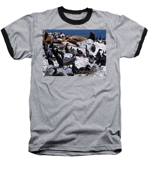 Baseball T-Shirt featuring the photograph Pelican Visitor by Susan Wiedmann