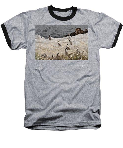 Pelicans Seals N Daisies  Baseball T-Shirt