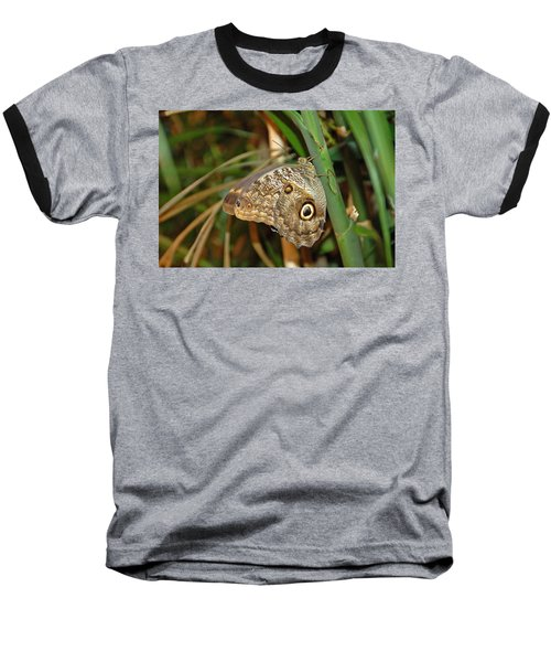 Perched Baseball T-Shirt