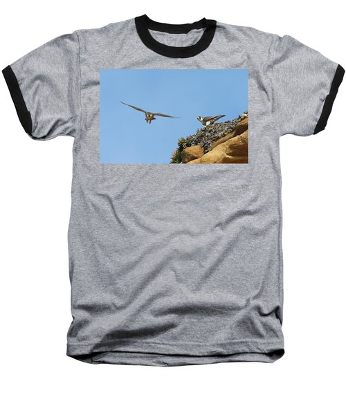 Peregrine Falcons - 1 Baseball T-Shirt