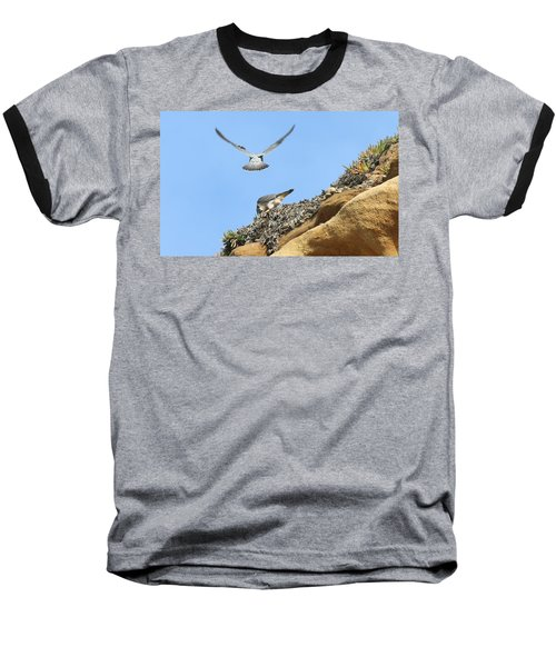 Peregrine Falcons - 2 Baseball T-Shirt