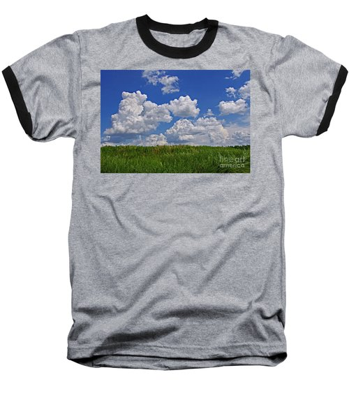 Perfect Day Baseball T-Shirt by Liz Masoner