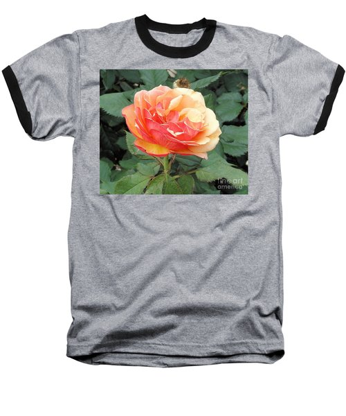 Baseball T-Shirt featuring the photograph Perfect Rose by Janette Boyd