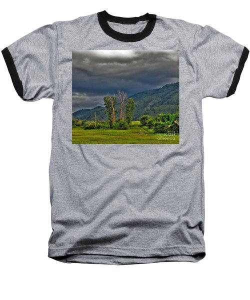 Baseball T-Shirt featuring the photograph Petes Trees by Sam Rosen