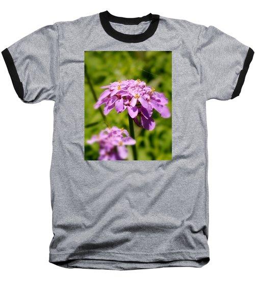 Petite Parasol Baseball T-Shirt
