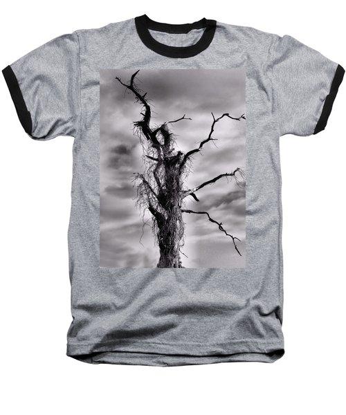 Baseball T-Shirt featuring the photograph Petrified Tree by Rosalie Scanlon