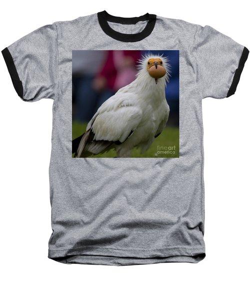 Pharaos Chicken 2 Baseball T-Shirt by Heiko Koehrer-Wagner