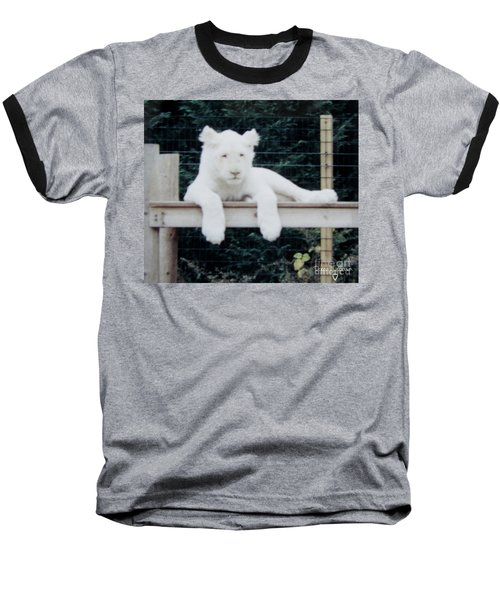 Baseball T-Shirt featuring the photograph Philadelphia Zoo White Lion by Donna Brown