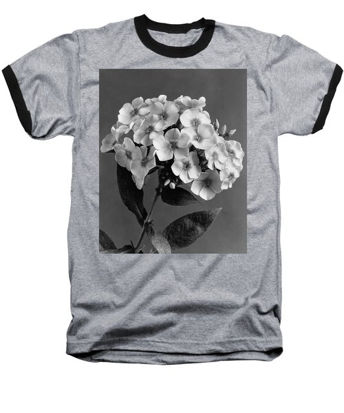 Phlox Blossoms Baseball T-Shirt