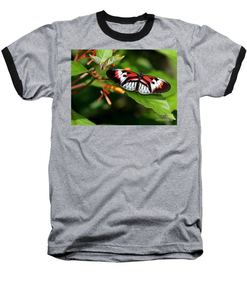 Piano Key Butterfly On Fire Bush Baseball T-Shirt