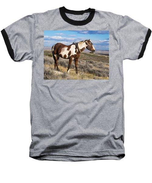 Picasso Of Sand Wash Basin Baseball T-Shirt by Nadja Rider