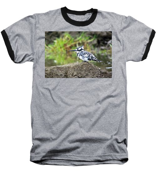 Pied Kingfisher Baseball T-Shirt