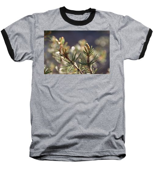 Baseball T-Shirt featuring the photograph Pine by David S Reynolds