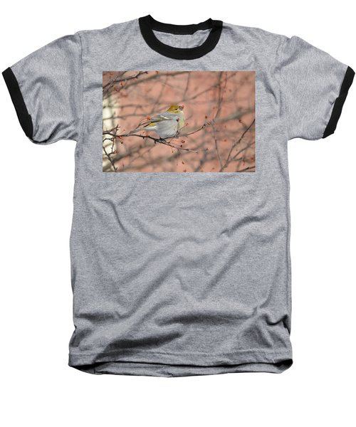 Baseball T-Shirt featuring the photograph Pine Grosbeak by James Petersen