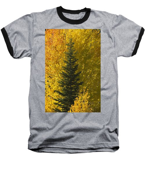 Pine In Aspens Baseball T-Shirt