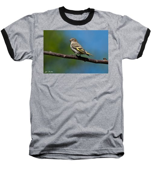Pine Siskin Perched On A Branch Baseball T-Shirt by Jeff Goulden