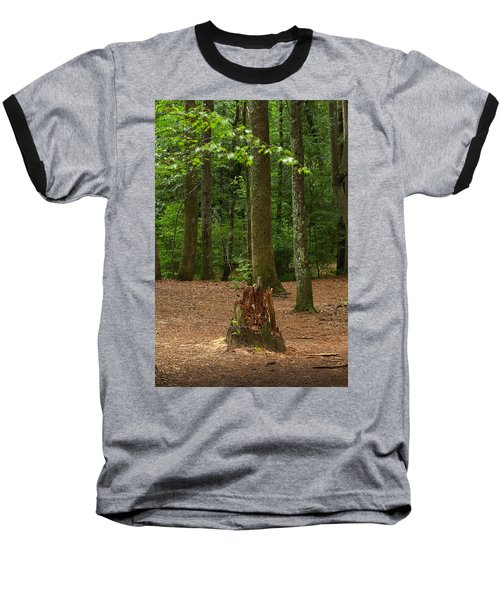 Pine Stump Baseball T-Shirt