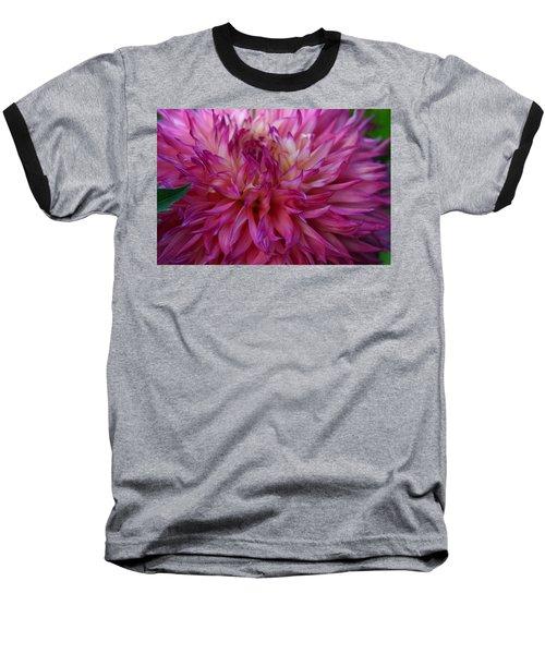 Pink And White Dahlia  Baseball T-Shirt by Denyse Duhaime
