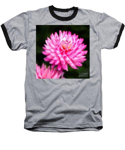 Pink Chrysanths Baseball T-Shirt