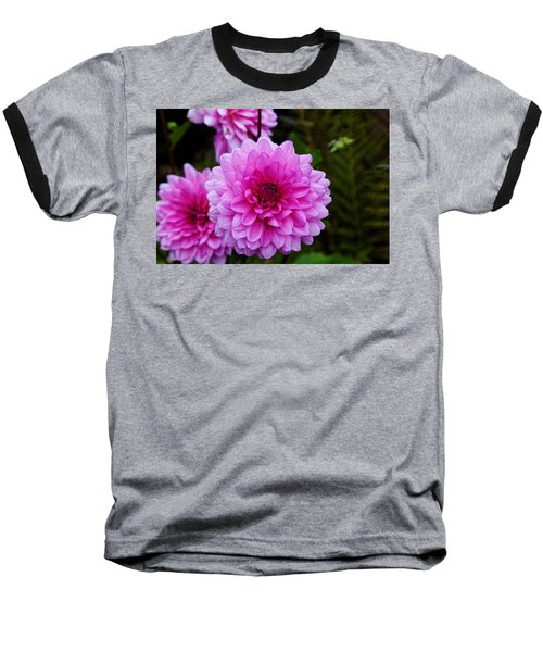 Pink Dahlias Baseball T-Shirt