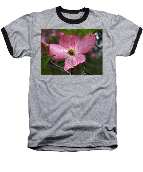 Pink Flowering Dogwood Baseball T-Shirt