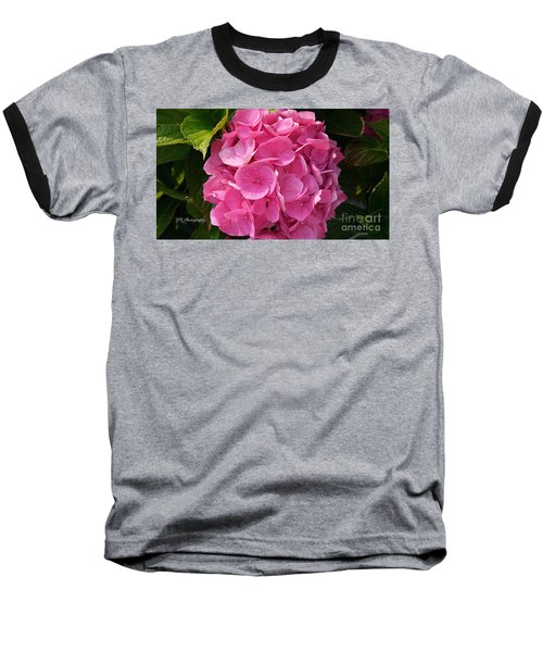 Baseball T-Shirt featuring the photograph Blushing Rose by Jeannie Rhode
