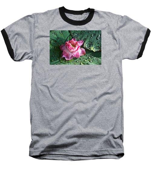 Pink Lotus Flower Baseball T-Shirt by Venetia Featherstone-Witty