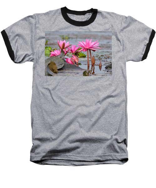 Pink Lotuses Baseball T-Shirt
