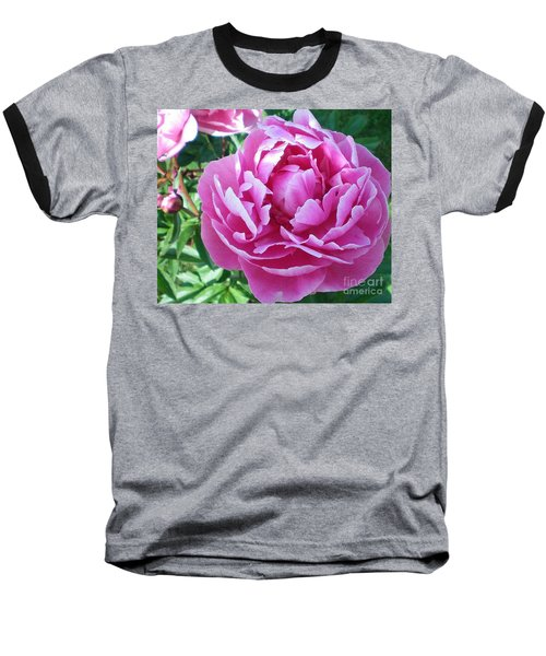 Pink Peony Baseball T-Shirt by Barbara Griffin