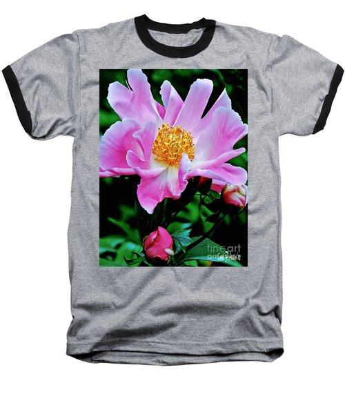 Pink Peony Garden  Baseball T-Shirt by Carol F Austin