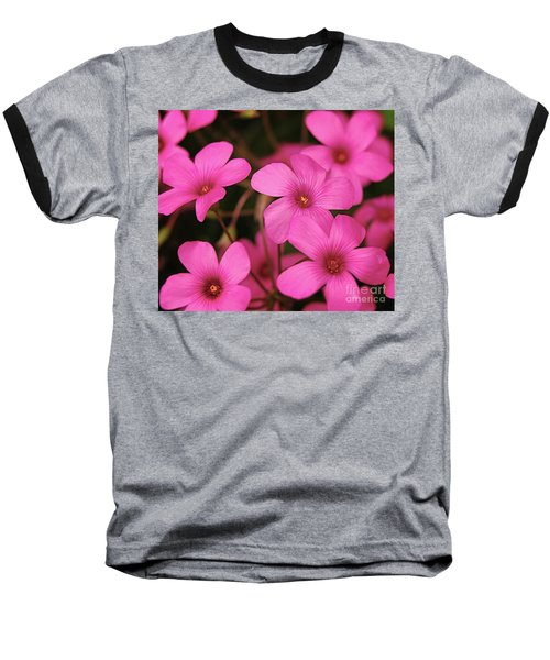 Pretty Pink Phlox Baseball T-Shirt