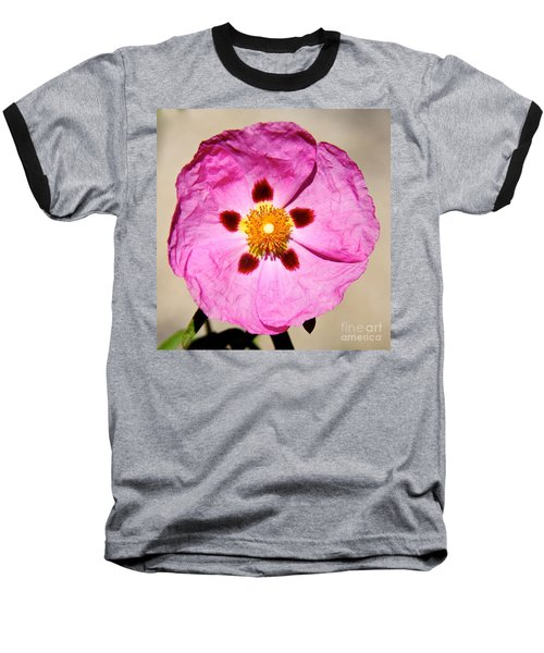Pink Rock Rose Baseball T-Shirt by Suzanne Oesterling