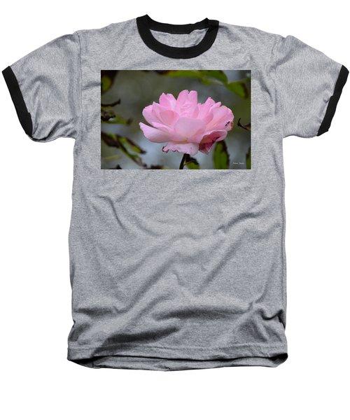 The Last Rose Baseball T-Shirt by Debra Martz