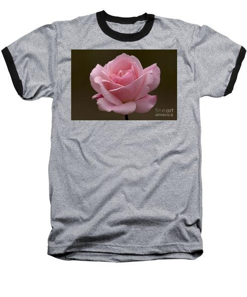 Baseball T-Shirt featuring the photograph Pink Rose by Meg Rousher
