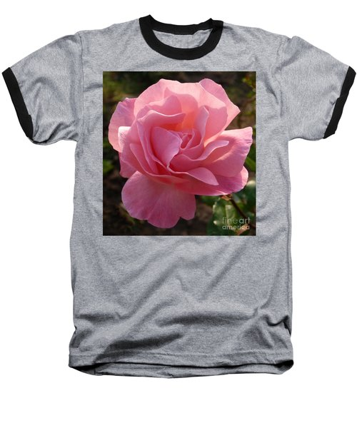 Pink Rose Baseball T-Shirt by Phil Banks