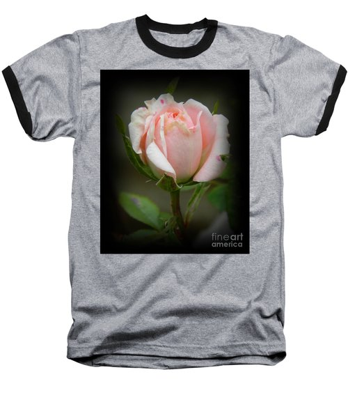 Pink Tea Rose Baseball T-Shirt