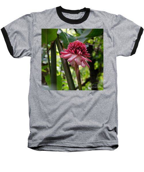 Pink Torch Ginger Baseball T-Shirt by Laurel Best