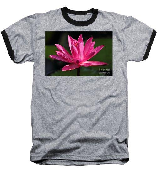 Pink Water Lily Baseball T-Shirt by Meg Rousher