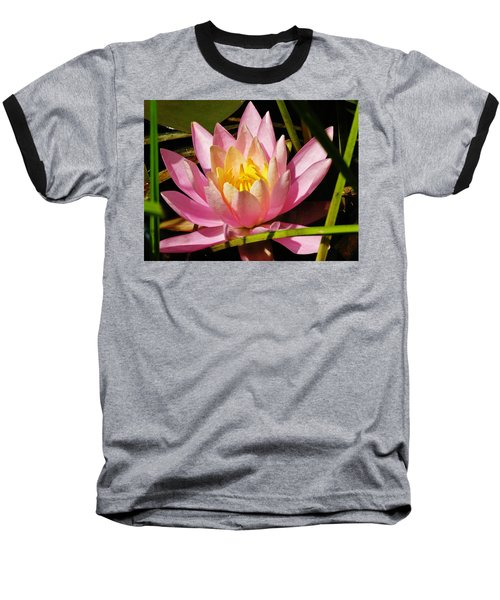 Pink Water Lily Baseball T-Shirt by Sherman Perry